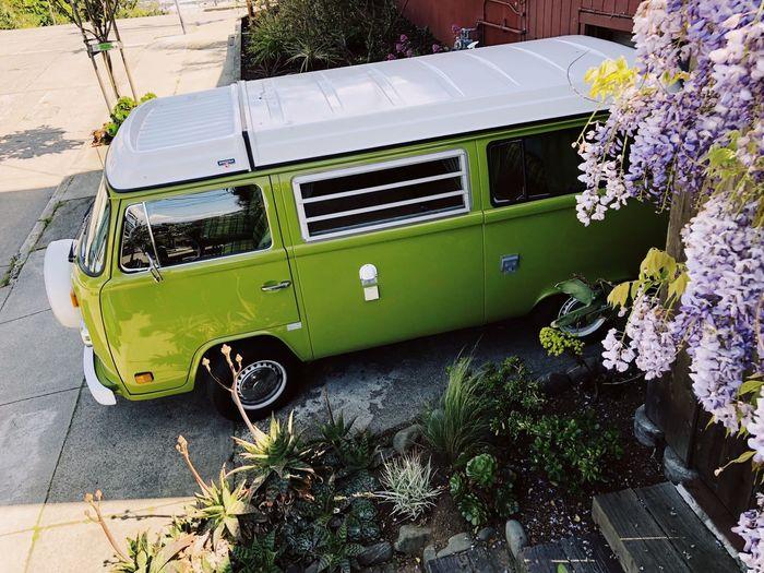 VW Bus Love Mode Of Transportation Land Vehicle Transportation Car Motor Vehicle Day Plant