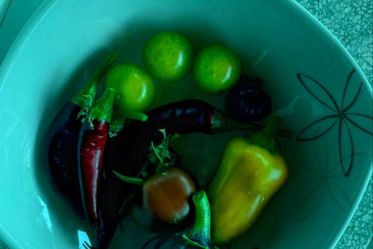 High angle view of chili peppers in bowl