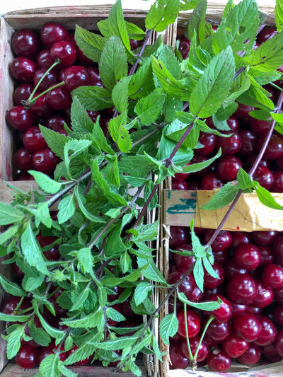 High angle view of cherries in market