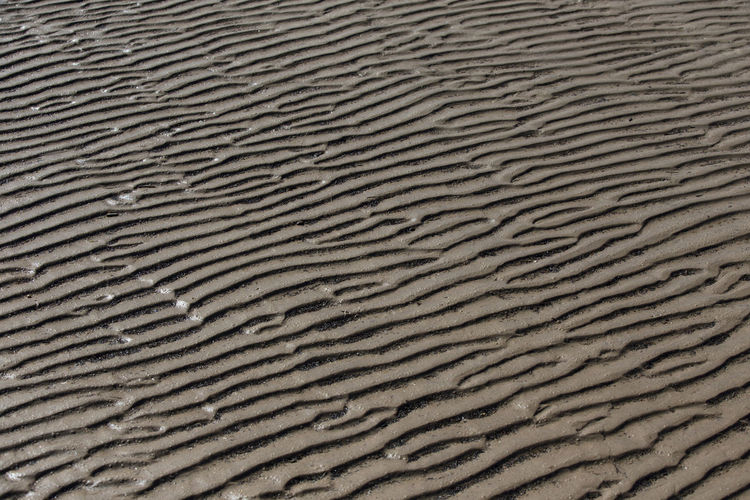Sandy wave of the sea at low tide, Wavy curves pattern of sand beach, Texture background Abstract; Background; Beach; Beautiful; Brown; Closeup; Coast; Color; Concept; Desert; Design; Dune; Holiday; Illustration; Landscape; Natural; Nature; Ocean; Outdoor; Pattern; Peaceful; Recreation; Resort; Sand; Sea; Summer; Sun; Texture; Textured; Trave Arid Climate Backgrounds Beach Close-up Day Desert Full Frame Nature No People Outdoors Pattern Rippled Sand Sand Dune Textured  Water Wave Pattern