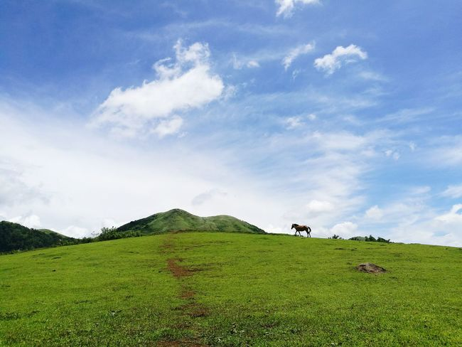 Breathing Space Outdoor Nature Eyeem Philippines Mountain Philippines Landscape Beauty In Nature
