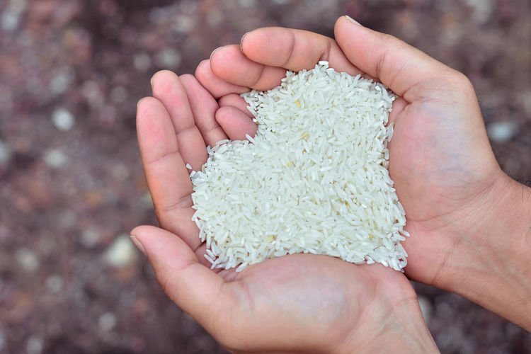 Cropped hands of man holding rice in heart shape over field