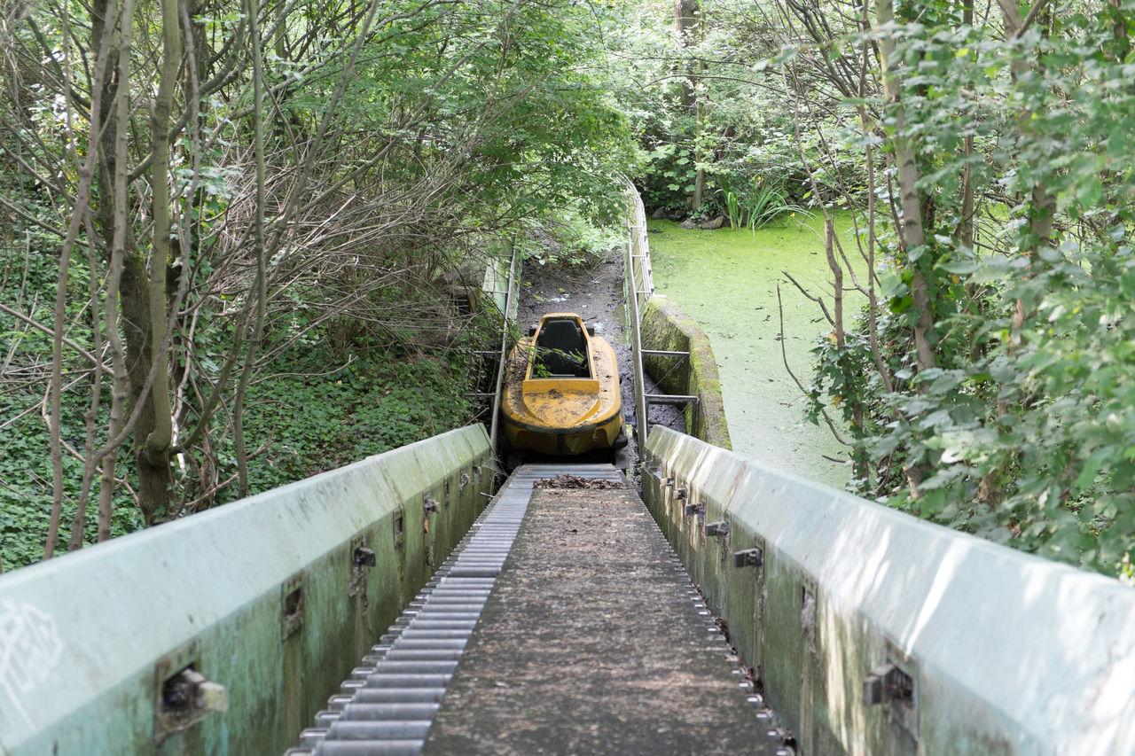Long narrow footbridge along plants