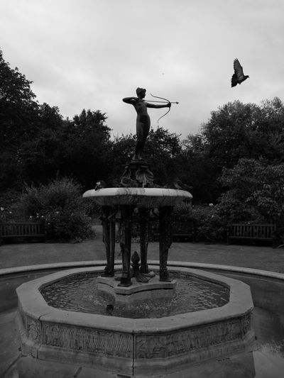 Monochrome Photography Hunter statue Flying Park - Man Made Space Fountain Growth Sky Outdoors Monument Footpath Park Tranquility Cloud - Sky Pigeon Flying Pigeon
