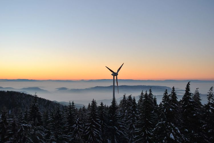 Windmill in forest against sky during sunset