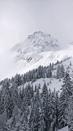 Snow Winter Mountain Cold Temperature Snowcapped Mountain Tranquility Polar Climate No People Beauty In Nature Point Of View Scenics Nature Landscape Vacations Sky Day Outdoors Shades Of Winter