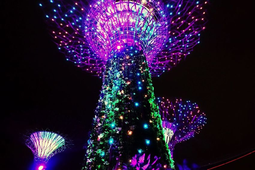 Singapore Gardensbythebay Supertree Grove First Eyeem Photo 싱가폴 슈퍼트리쇼 가든스바더베이