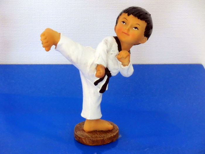 TaeKwondo school in HK Figurines  Healthy Activity Martial Art School Martial Arts Children Taekwondo Color Palette
