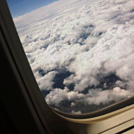 Fly Fly On The Plane Clouds Perfect