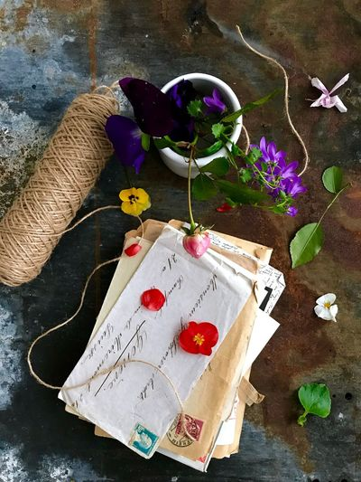 Old letters Still Life Letters Vintage Old Flower High Angle View Indoors  No People Fragility Day Nature Close-up