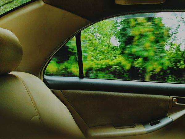 Passing through Travel Window Tree Green Color Outdoors Chittagong Bangladesh Tranquility Lush Foliage Day Green Beauty In Nature Nature WoodLand Transportation Car Transparent