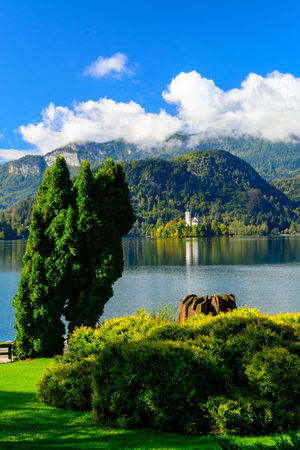 Plant Tree Water Cloud - Sky Sky Mountain Scenics - Nature Beauty In Nature Lake Nature Green Color Tranquil Scene Tranquility Day No People Mountain Range Non-urban Scene Growth Outdoors