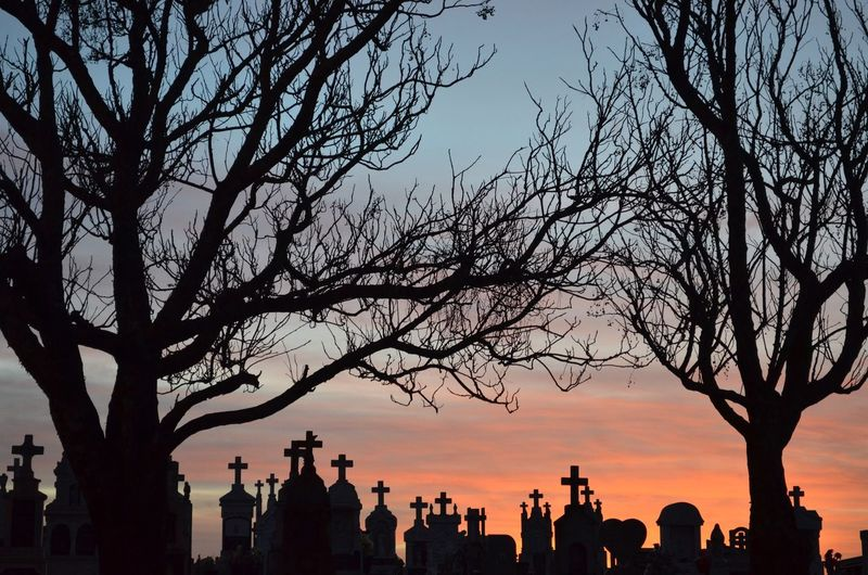 Silhouette Crosses On Tombstones By Bare Trees At Cemetery Against Sky During Sunset
