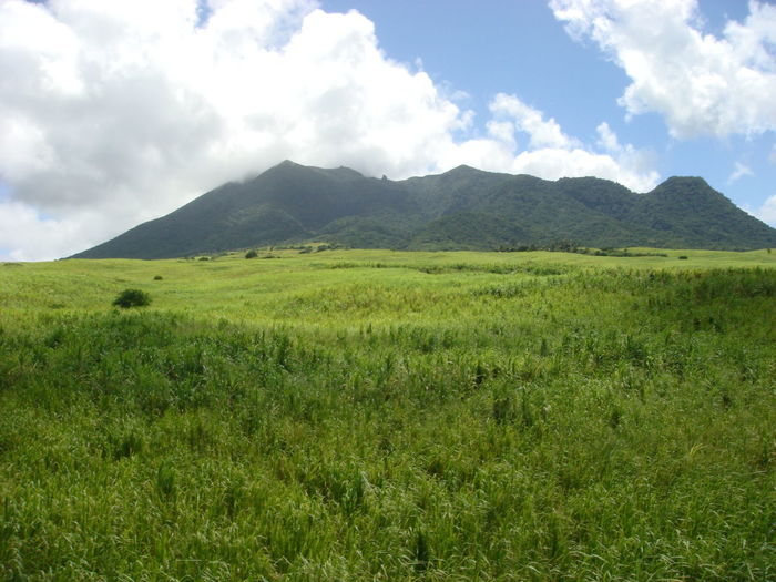 Countryside Field Green Hills Hillside Landscape Meadow Nature Outdoors Peaceful Scenery Scenic Serene St. Kitts Tranquility
