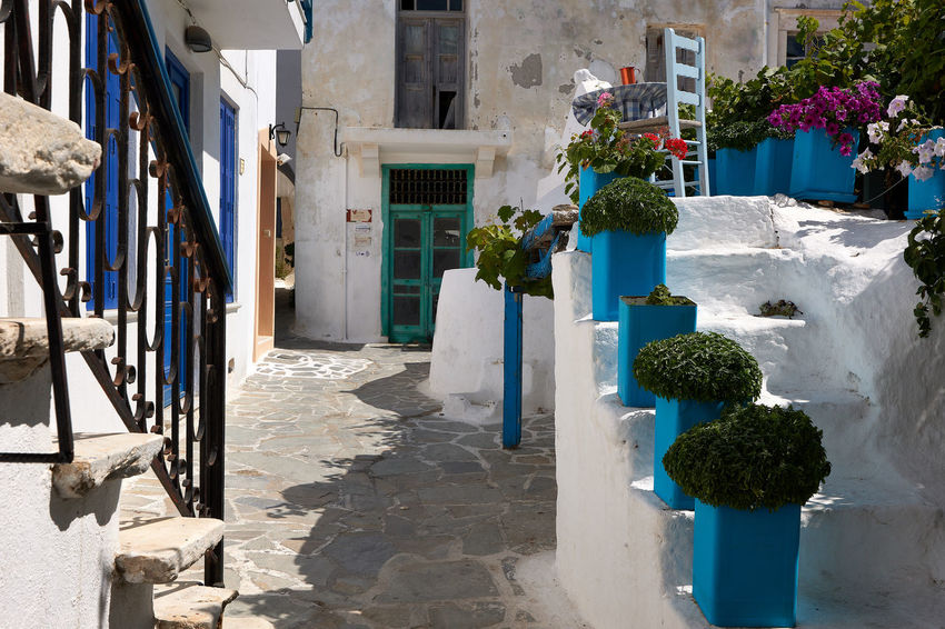 Naxos Town Architecture Bouquet Building Building Exterior Built Structure City Day Flower Flowering Plant Growth House Nature No People Outdoors Plant Potted Plant Seat Shadow Staircase Sunlight White Color
