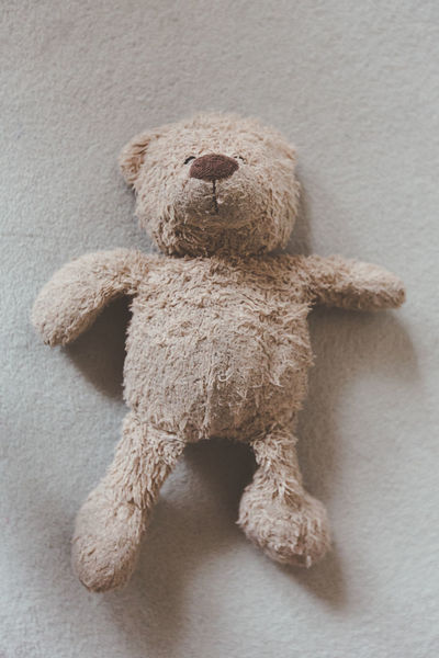 Lonely teddy bear left alone on sofa waiting for love Abuse Alone Animal Head  Brown Child Abuse Close-up Cry Cudle Day Depression Emotional Abuse Focus On Foreground I'm Your Friend Left Alone Love Love Me Need Help No People Psychology Regret Sad Softness Teddy Bear Toy Unhappy