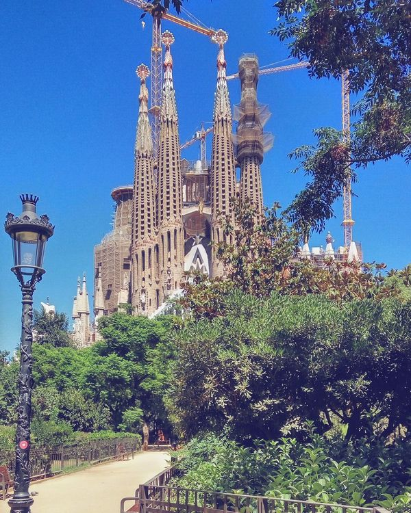 Everyday Sagradafamilia give us an exclusive new view. Here the one of today enjoy. Hanging Out Taking Photos Hello World Relaxing Hi! Enjoying Life Park Tranquility Nature Day No People Architecture Built Structure Streetphotography Exterior City Tourism Sunny Outdoors Park View