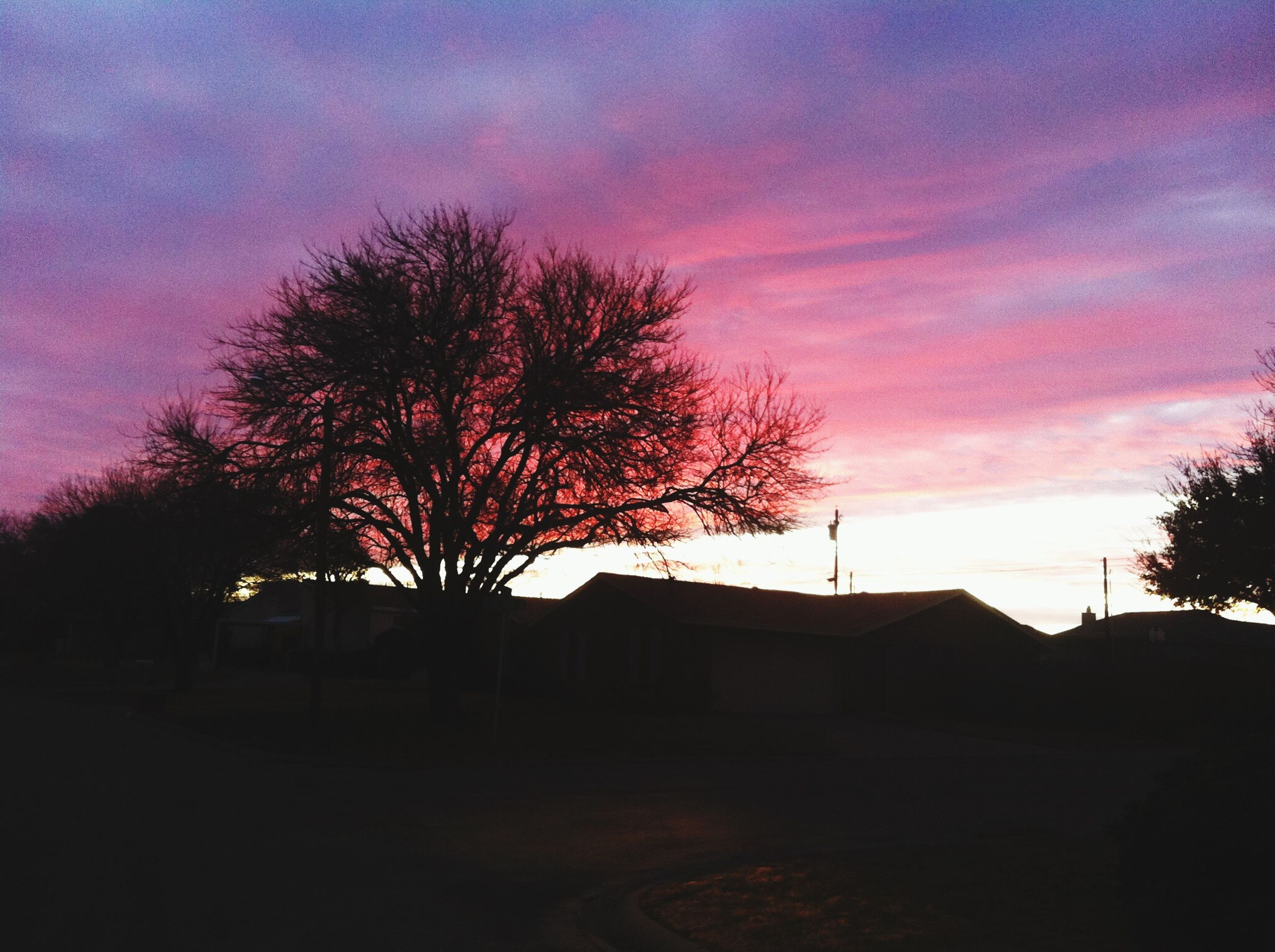 tree, sky, silhouette, sunset, built structure, architecture, cloud - sky, building exterior, bare tree, house, dusk, beauty in nature, nature, tranquility, cloud, low angle view, scenics, cloudy, tranquil scene, outdoors