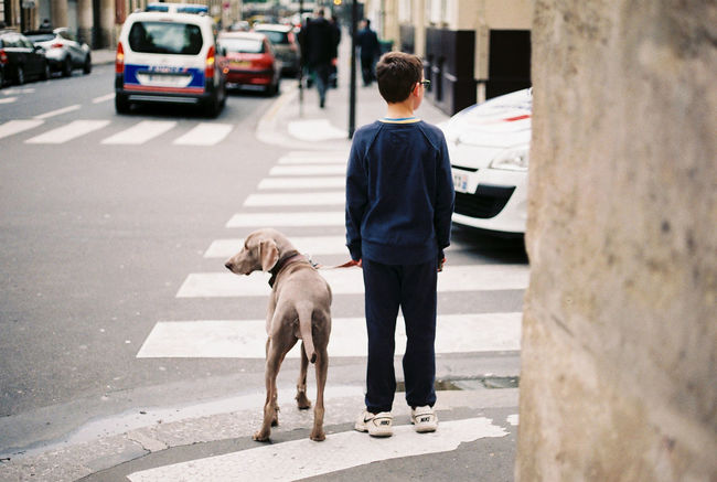 Alertness Boy Dailywalk Dog Dogwalking Film Photography Filmisnotdead Paris Police Staybrokeshootfilm Tension The Street Photographer - 2017 EyeEm Awards Vigilance