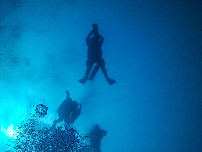 Scuba Diving Underwater UnderSea Adventure Blue Silhouette Déco Boubles Bolle Costacuti Diving Flipper Exploration Swimming Underwater Diving Unrecognizable Person People Sea Full Length Scuba Mask Leisure Activity Be. Ready. Water Adults Only Sea Life Done That.