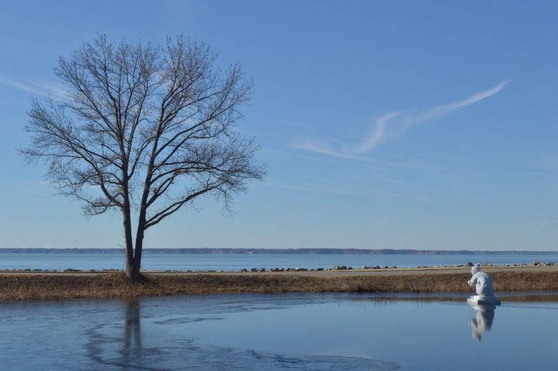 Ice Statue Tree