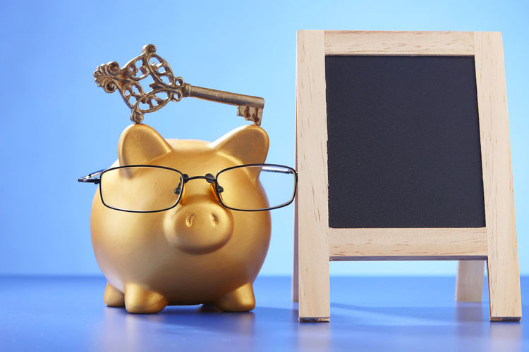 saving for your future Key Of Success Bring Home The Bacon Business Coin Box Copy Space Piggy Bank Animal Representation Blackboard  Blue Blue Background Coin Bank Colored Background Copy Space Debt Eyeglasses  Finance Home Finances Indoors  Indoors  Investment Key No People Savings Studio Shot Wealth