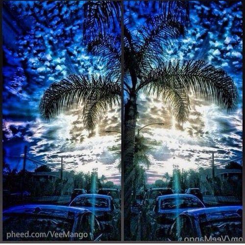 #Peace #Serenity #nature #photography #streetphotography #iphone5 #olloclipfisheye #olloclip #veemango #street #tree #green #editpix #love #sky #cloudporn FlipTwins