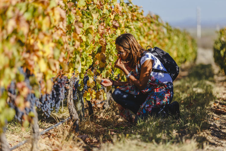 Woman Eating Grapes At Vineyard