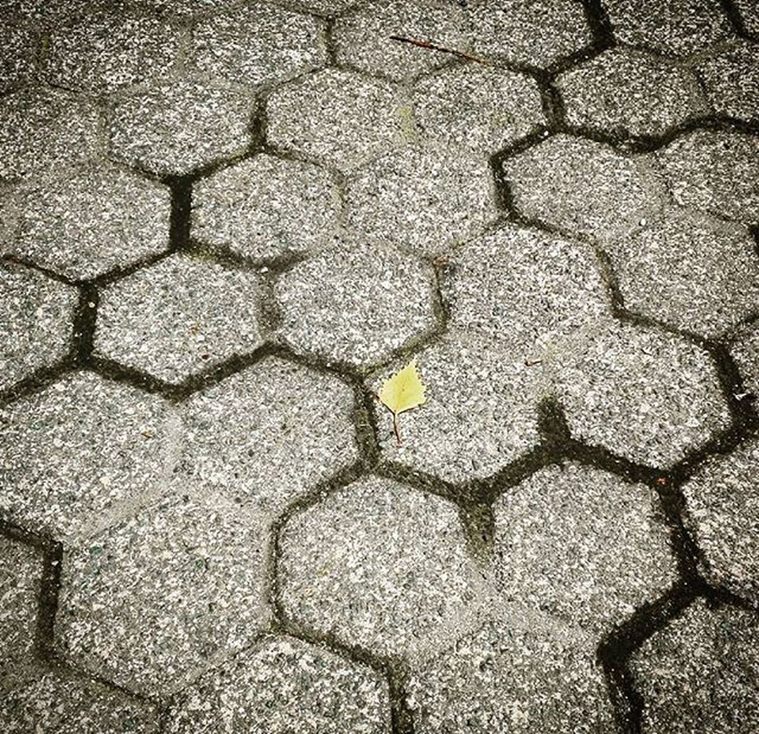 full frame, backgrounds, textured, high angle view, pattern, cobblestone, stone - object, no people, directly above, close-up, rough, day, outdoors, street, cracked, ground, pebble, paving stone, stone, sunlight
