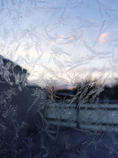 Frost Frozen Cold Window Winter Sunset Snowflacke