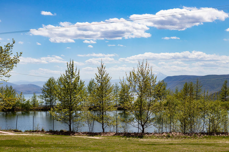 Scenic view of lake by trees against sky