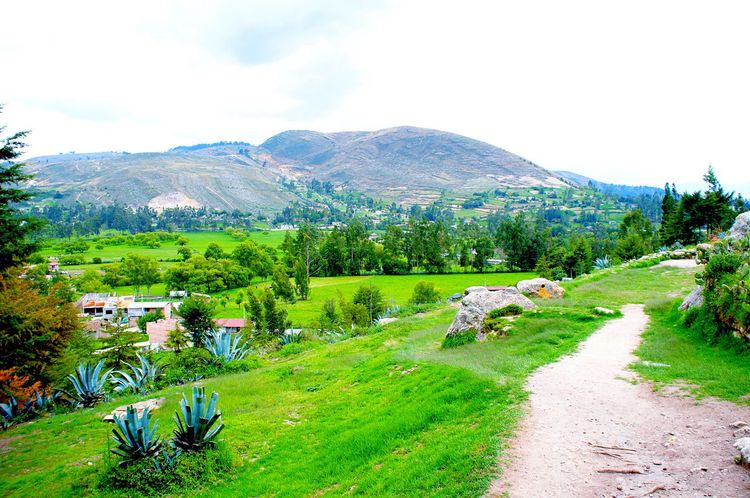 View😍🌿 Nature Scenics Beauty In Nature Growth Green Color Tranquil Scene Landscape Sky Outdoors Agriculture Tree Mountain Tranquility Freshness Field Tourism Travel Ventanillas De Otuzco Peruvian Tradition Country