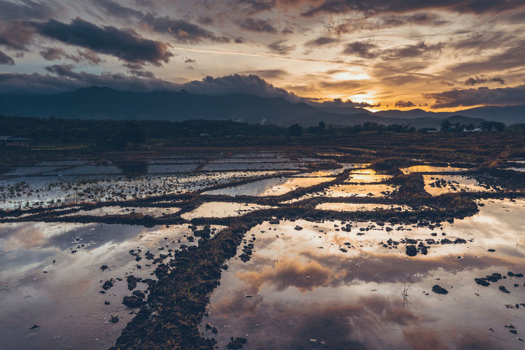 Agriculture field against sky during sunset