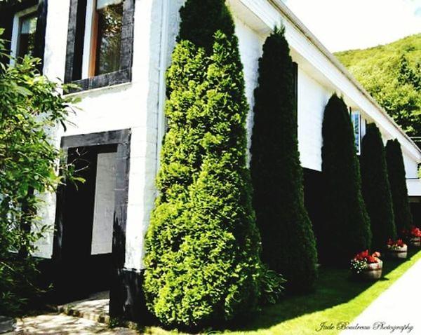 Glenora Distillery Cape Breton Travel Photography