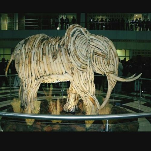 Elephant sculpture made of ivory tusks... Anti Poaching Botswana