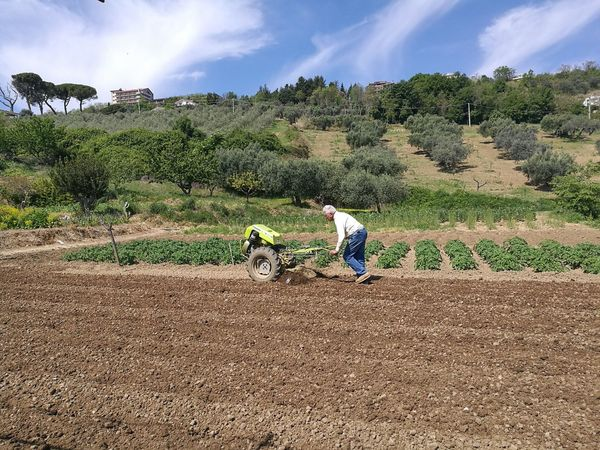 Agriculture Arable Cultivator Farmer Heart Man Rural Scene Tiller Tillers Tractor