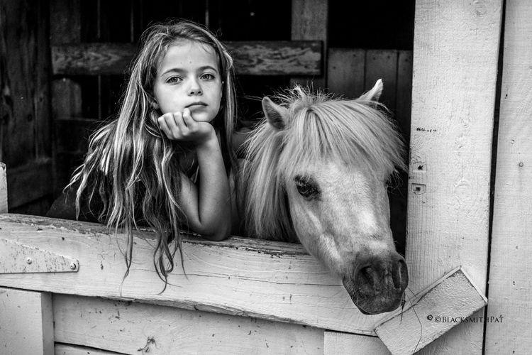 Molly-cuddled. Faces Of Summer Sherbrooke The Portraitist - 2015 EyeEm Awards Horses