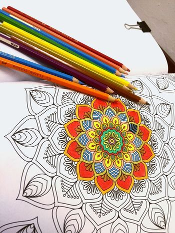Colouring Book Calming Free Time Pencil Colour Blue Red Orange Green Yellow Therapy Colouring  Colours