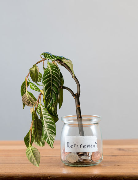 Lack of sufficient savings for retirement or old age with a saving jar with little cash and a dying plant Plant Poor  Bankrupt Cash Dying Finance Loose Change No People Not Enough Old Age Pension Poverty Problem Problems Retirement Retirement Plan Savings Shortage Shortfall Social Security Studio Shot