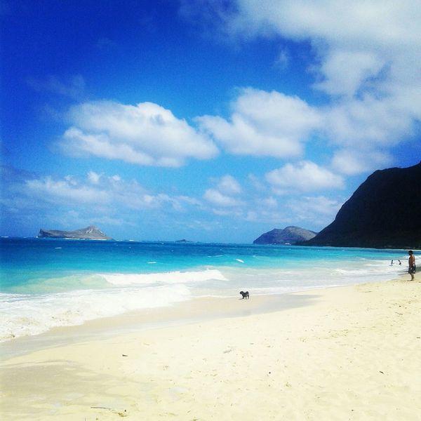 Beach Picoftheday Photooftheday Hawaii SundayFunday Cruising