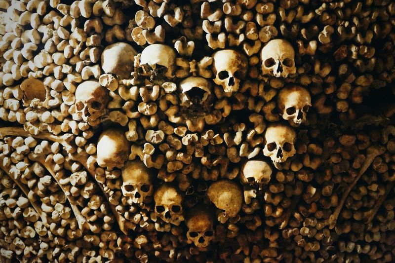 Beautifully Organized Catacombes Paris France