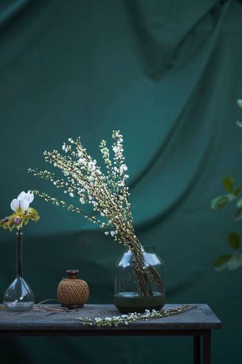 Plant Flower Flowering Plant Table Nature Decoration No People Growth Green Color Beauty In Nature Indoors  Freshness Plant Part Vase Still Life Fragility Glass - Material Flower Head Close-up Tree