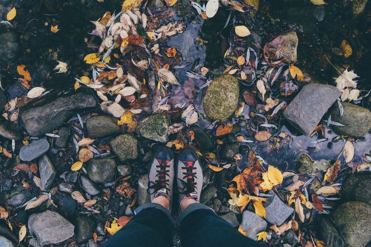 Low section of woman standing on fallen autumn leaves