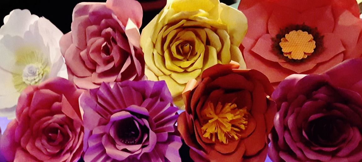 Indoors  No People Flower Close-up Multi Colored Freshness Day Flores Papel Flores Coloridas Paper