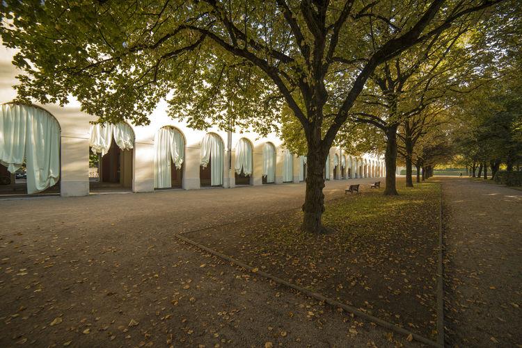 Hofgarten_Arkaden_Herbst_München Arch Autumn Building Exterior No People Tree History Architecture Outdoors Hofgarten Arkaden München