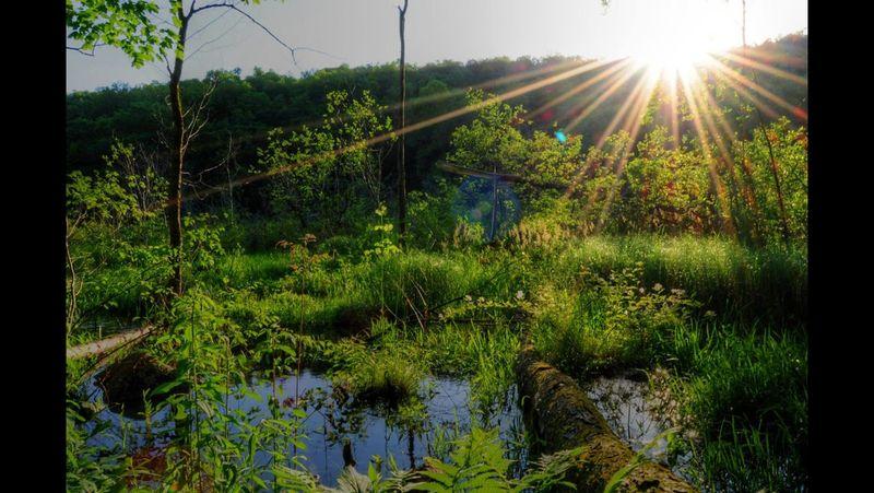Beautiful Nature Nature EyeEm Nature Lover