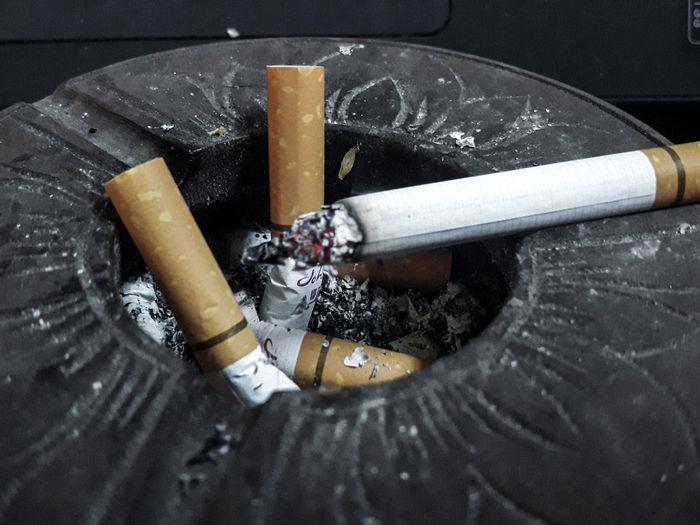 Ash Bad Habit
