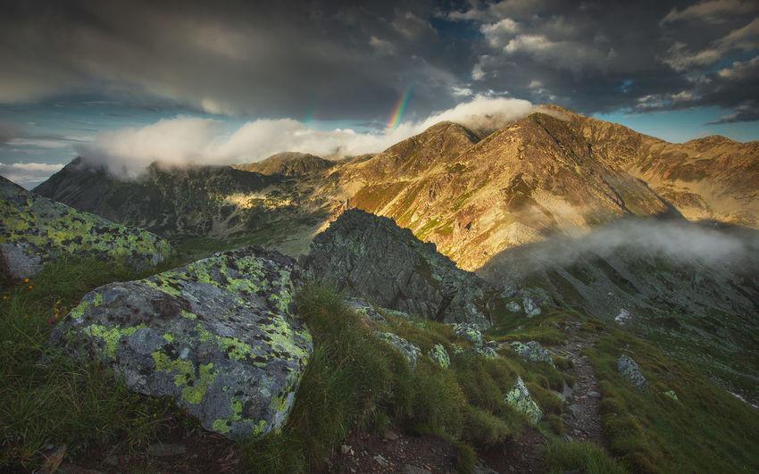Summer landscape from retezat mountains natural park, romania.