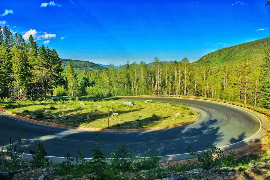 Nature Outdoors Green Color Tree Sunlight Beauty In Nature Day Mountain No People Blue Sky Landscape Rockymountainnationalpark Freshness Colorado Green Color Hairpin Curve Long Drive EyeEmNewHere