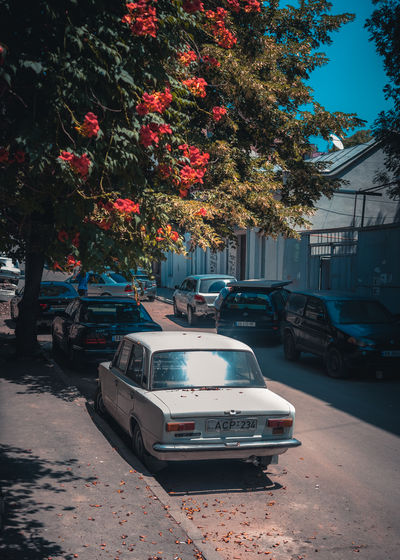 Cars parked on street in city
